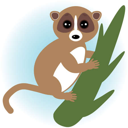 nocturnal animal: lemur on green branch on white background.