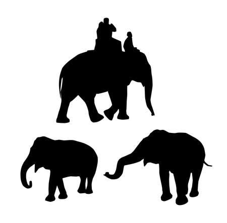 black silhouette: elephants black silhouette on white background. vector illustration Illustration