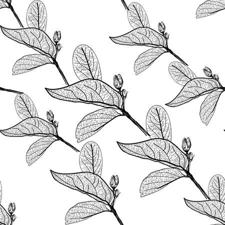 Leaves contours on white background. floral seamless pattern, hand-drawn. Vector illustration