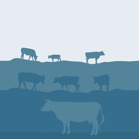 Cows silhouette graze in the field, landscape sky grass pasture. Blue, gray background. Vector illustration