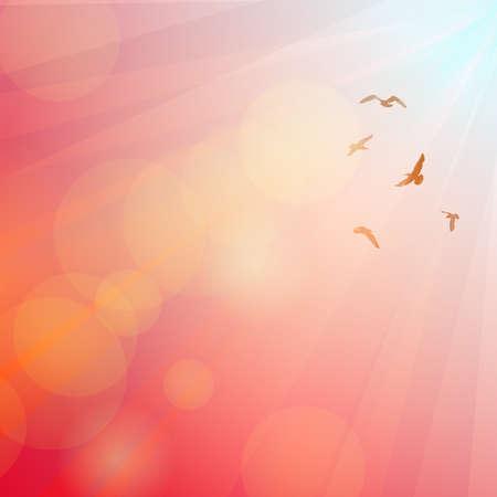 gaviota: Los p�jaros, gaviotas silueta en los rayos en el fondo de color rosa, puesta del sol, amanecer. Ilustraci�n vectorial