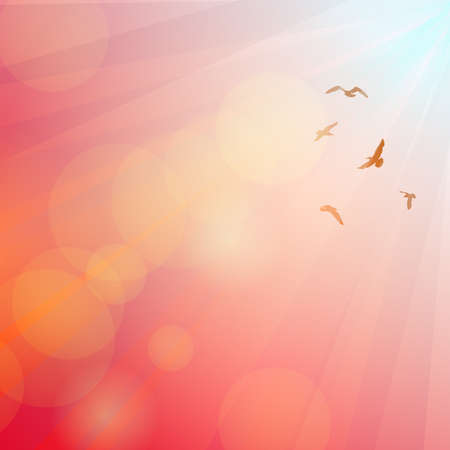 Birds, seagulls silhouette in the rays on pink background, sunset, dawn. Vector illustration Illustration