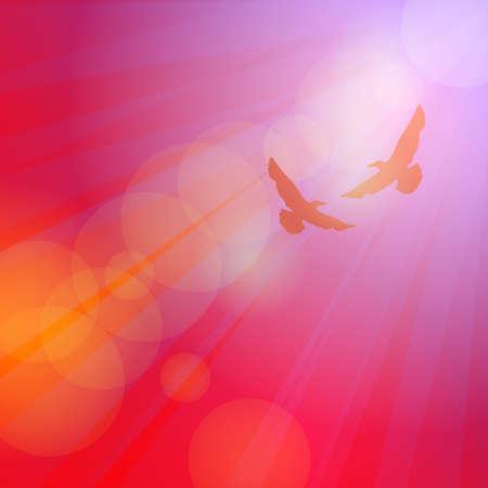 seagulls: Birds, seagulls silhouette on pink background sunset dawn. Vector illustration Illustration