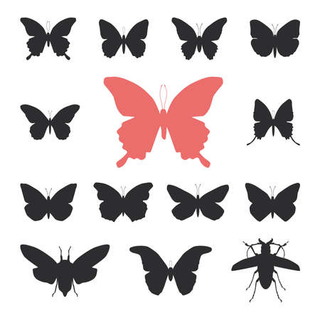 cicada: butterflies, cicada set isolated silhouette on white background. Vector illustration