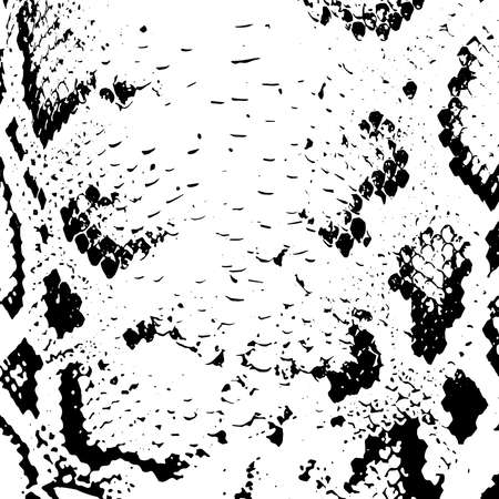 snakeskin: Snake skin abstract texture. black on white background. Vector illustration Illustration