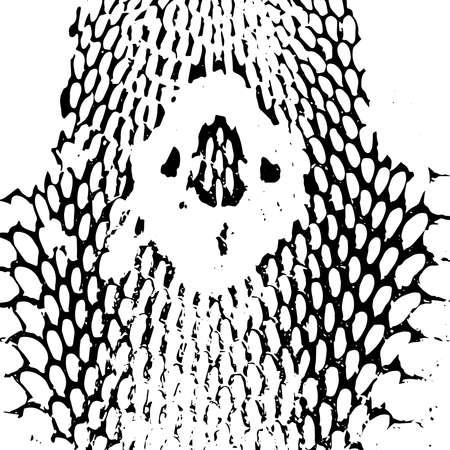 serpiente cobra: la cabeza de la cobra de la serpiente piel textura abstracta. negro sobre fondo blanco. Ilustración vectorial