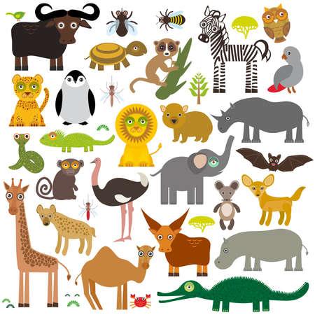 africa chameleon: Animal Africa: parrot Hyena Rhinoceros Zebra Hippopotamus Crocodile Turtle Elephant Mamba snake camel mosquito tsetse ostrich lemur Chameleon Monkey Fennec fox Leo Leopard Giraffe buffalo Penguin Vector