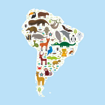 wildlife reserve: South America sloth anteater toucan lama bat fur seal armadillo boa manatee monkey dolphin Maned wolf raccoon jaguar Hyacinth macaw lizard turtle crocodile penguin Blue-footed booby Capybara. Vector illustration