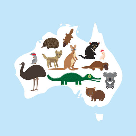 map of Australia. Echidna Platypus ostrich Emu Tasmanian devil Cockatoo parrot Wombat crocodile kangaroo dingo. Vector illustration Illustration