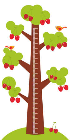 measure height: Big tree with green leaves and ripe red cherry on white background Children height meter wall sticker, kids measure. Vector illustration Illustration