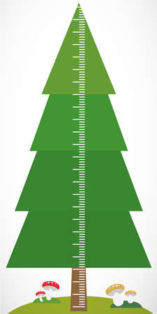 height measure: Big green tree spruce and mushrooms on white background Children height meter wall sticker, kids measure. Vector illustration