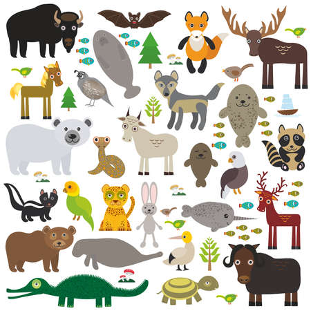 ox: bison bat manatee fox elk horse wolf partridge fur seal Polar bear Pit viper snake Mountain goat raccoon Eagle skunk parakeet Jaguar hare narwhal elk Grizzly gannet Muskox turtle alligator. Vector illustration