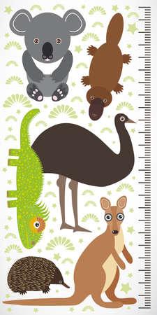 lagartija: Animales Australia - koala canguro ornitorrinco lagarto equidna emú. Niños metros de altura etiqueta de la pared Vector