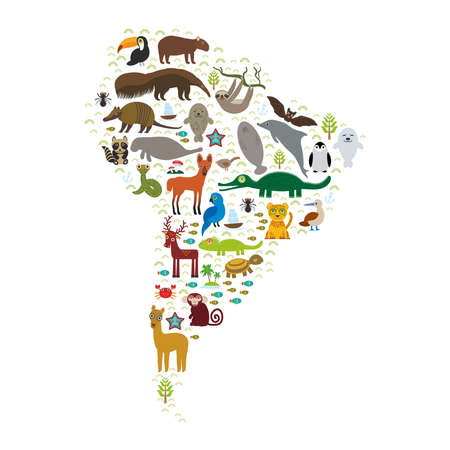 South America sloth anteater toucan lama bat fur seal armadillo boa manatee monkey dolphin Maned wolf raccoon jaguar macaw lizard turtle crocodile deer penguin Blue-footed booby Capybara. Vector illustration Ilustração