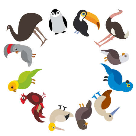 booby: Cute Cartoon birds set - gannet penguin ostrich toucan parrot eagle booby cock, round frame on white background, card design, banner for text. Vector illustration