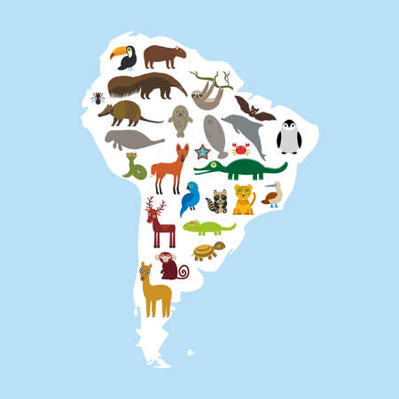 South America sloth anteater toucan lama bat fur seal armadillo boa manatee monkey dolphin Maned wolf raccoon jaguar Hyacinth macaw lizard crocodile deer penguin Blue-footed booby Capybara. Vector illustration