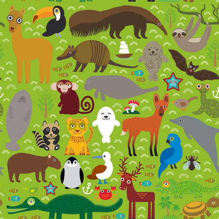South America seamless pattern sloth anteater toucan lama fur seal armadillo boa manatee dolphin Maned wolf raccoon jaguar macaw lizard turtle crocodile deer penguin Blue-footed booby Capybara. Vector illustration