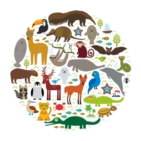 wildlife reserve: South America sloth anteater toucan lama bat seal armadillo boa manatee monkey dolphin Maned wolf raccoon jaguar Hyacinth macaw lizard turtle crocodile deer penguin Blue-footed booby Capybara. Vector illustration