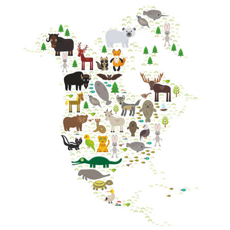 brown bear: bison bat manatee fox elk horse wolf partridge fur seal Polar bear Pit viper snake Mountain goat raccoon Eagle skunk parakeet Jaguar hare narwhal elk Grizzly gannet Muskox turtle alligator. Vector illustration