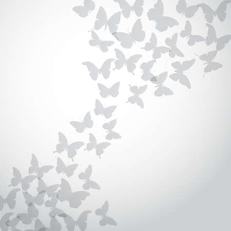 white butterfly: Abstract gray Butterfly Background on white background. Vector illustration Illustration