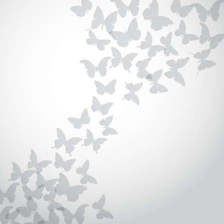 silhouette papillon: Résumé papillon fond gris sur fond blanc. Vector illustration Illustration