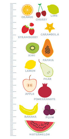 height measure: Fresh bright juicy fruits set on white background. Children height meter wall sticker, kids measure. Vector illustration