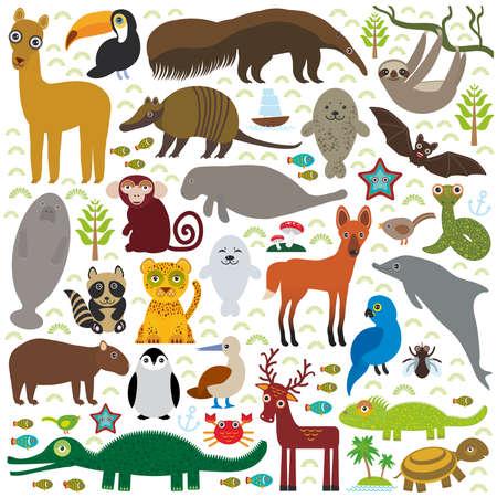 guacamaya caricatura: América del Sur oso hormiguero pereza lama tucán bate piel sellar armadillo boa manatíes delfines mono lobo de crin mapache jaguar jacinto lagarto guacamaya ciervos cocodrilo tortuga pingüinos piquero Capybara. Ilustración vectorial