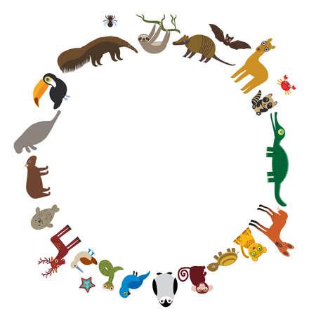 guacamaya caricatura: Marco redondo. Pereza tucán oso hormiguero bate lama sello armadillo boa manatíes delfines mono lobo de crin mapache ciervos cocodrilo tortuga jaguar Jacinto guacamayo lagarto pingüino Azul-con piquero Capybara. Ilustración vectorial