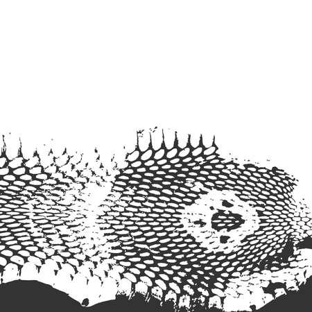 serpiente cobra: Piel de serpiente textura abstracta, cabeza de cobra. negro sobre fondo blanco. Ilustración vectorial