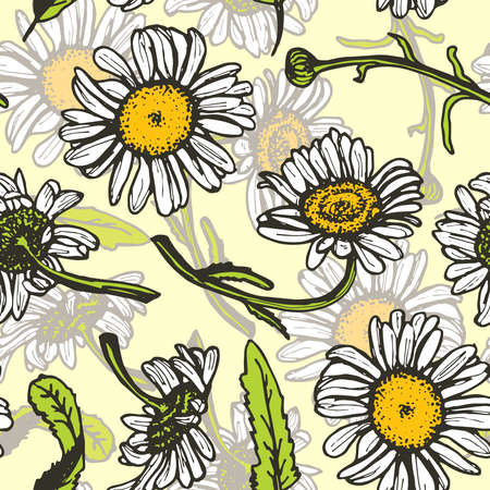 camomile tea: Beautiful vintage background with white daisies seamless patern on yellow background. Vector illustration Illustration