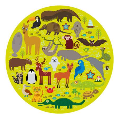 lagartija: América del Sur oso hormiguero pereza lama tucán bate sello armadillo boa manatíes delfines mono lobo de crin mapache ciervos cocodrilo tortuga jaguar Jacinto guacamayo lagarto pingüino Azul-con piquero Capybara. Ilustración vectorial