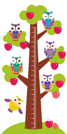 measure height: set bright colorful owls Big apple-tree with green leaves and red apples on white background Children height meter wall sticker, kids measure. Vector illustration Illustration