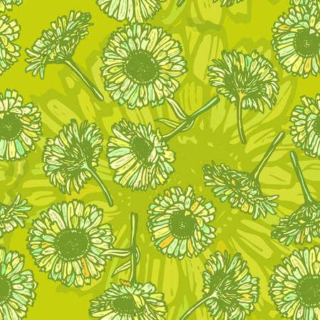 calendula: summer calendula flowers, sketch, dark green outline on green background. Vector illustration Illustration