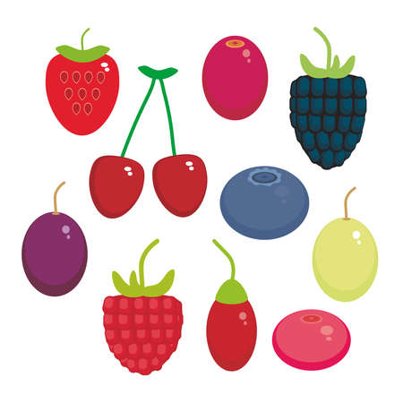 whortleberry: Cherry Strawberry Raspberry Blueberry Cranberry Cowberry Goji Grape  seamless pattern Fresh juicy berries on white background. Vector illustration