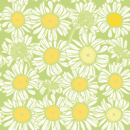 Beautiful vintage background with white sketch daisies seamless pattern on light green background. Vector illustration Illustration