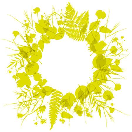 꽃 라운드 프레임 화 환 꽃, 자연 디자인 나뭇잎 꽃 요소입니다. 초대, 결혼식 또는 인사말 카드 봄 여름 디자인. 골드 노란 겨자 실루엣, 흰색 배경입니 일러스트