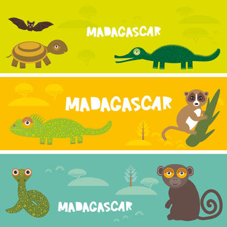 Cute animals set Turtle bat crocodile chameleon snake lemur, kids background African animals, Africa Madagascar bright colorful banner. Vector illustration