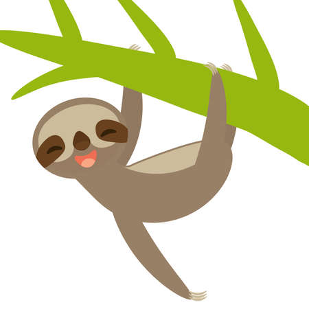 funny and cute smiling Three-toed sloth on green branch, isolated white background. Vector illustration