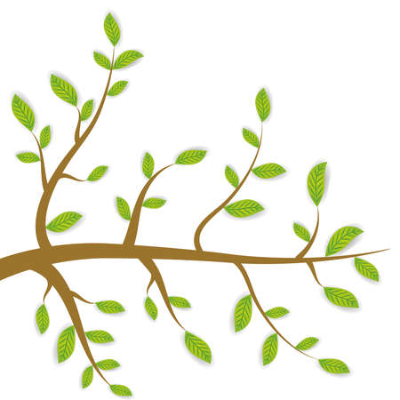 twigs:  spring Brown branches with green leaves on white background. Vector illustration