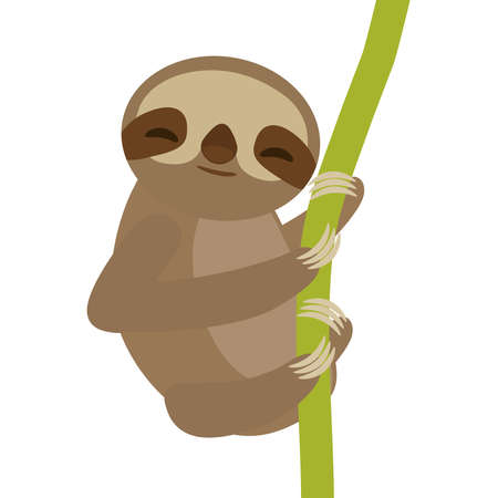 sloth: funny and cute smiling Three-toed sloth on green branch, isolated white background. Vector illustration