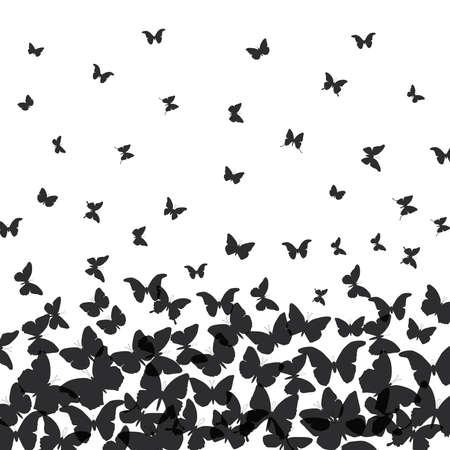 spring summer card design. banner, black butterfly on white background. Vector illustration Иллюстрация