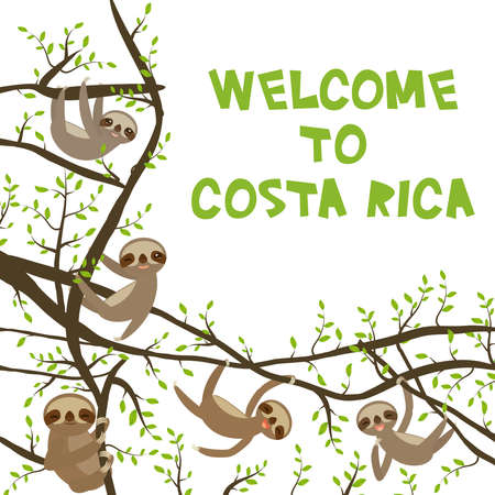 card banner template with funny and cute smiling Three-toed sloth set on green branch tree creeper, copy space isolated white background. Welcome to Costa Rica Vector illustration