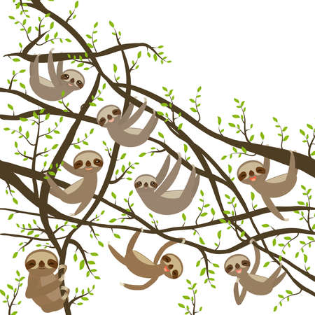 card banner template with funny and cute smiling Three-toed sloth set on green branch tree creeper, copy space isolated white background. Vector illustration