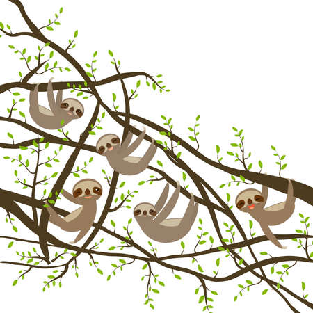 Funny and cute smiling Three-toed sloth set on green branch tree vector illustration