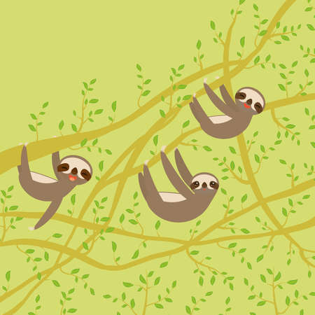 card banner template with funny and cute smiling Three-toed sloth set on green branch tree creeper, copy space green background. Vector illustration