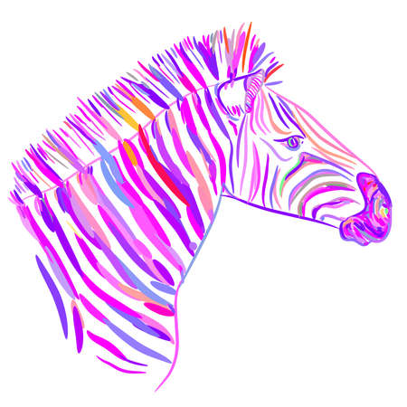 Rainbow pink Zebra portrait vector illustration Illustration