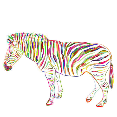 Rainbow Zebra portrait sketch isolated on white background. Vector illustration