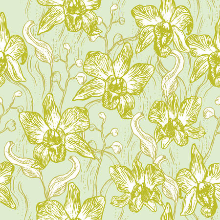 Beautiful Orchid. Hand drawn set on light blue background olive Green pink white contour sketch seamless pattern, card banner design. Vector illustration
