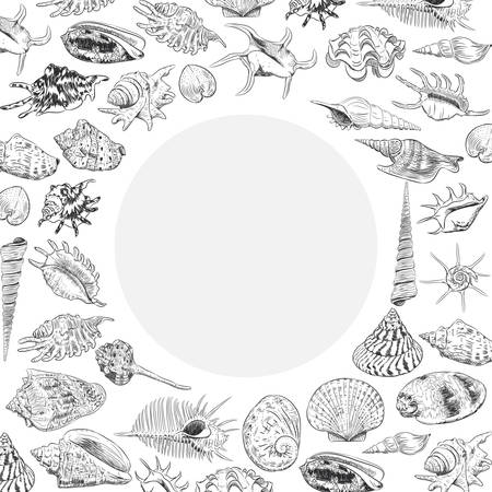 Summer concept with Unique museum collection of sea shells rare endangered species, molluscs black contour on white background. Circle wreath card banner design with space for text. Vector illustration