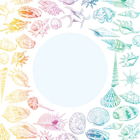 Summer concept with Unique museum collection of sea shells rare endangered species, molluscs rainbow contour on white background. Circle wreath card banner design with space for text. Vector illustration